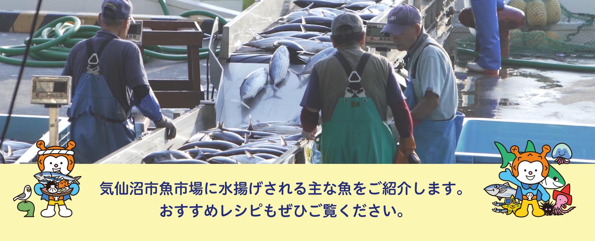 お魚カレンダー